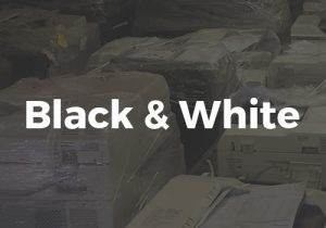 Black & White Rental